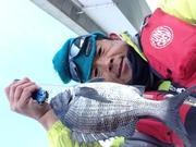 知多半島DE釣り鯛放題