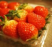 tomatoさんのプロフィール