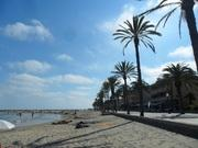 スペイン・バルセロナ郊外の日常日記 たまに観光の事