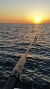 魅惑のボラ釣りブログ