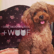+WOOF ーSWEETMONAMI'S HPー