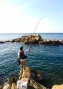 青波の磯釣りブログ