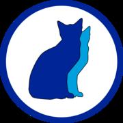 ANAマイルを貯めた猫