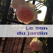 ガーデニングブログ Le son du jardin