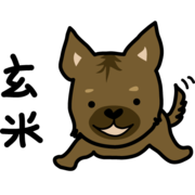 甲斐犬玄米 と MIX犬椎茸
