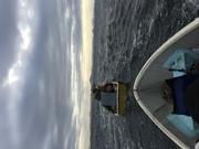 Daveの海釣りCarnival ‼