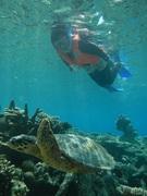 モルディブをお得に賢く旅する!現地情報発信ブログ