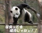 花嫁ダイエット!!