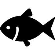 シーバスはじめました  HIDEKINの釣りブログ