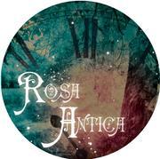Rosa†Antica(ロサ・アンティカ)