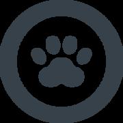 ネコ猫のブログ