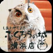 しあわせをよぶふくろうの城 横浜店ブログ