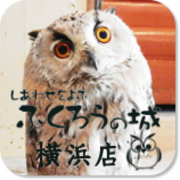 しあわせをよぶふくろうの城 横浜店さんのプロフィール