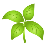 加齢臭対策.com | 体臭・頭皮の臭いの原因と改善法