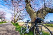 リッキーの自転車世界放浪記