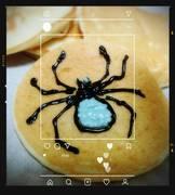 たらんの蜘蛛日記