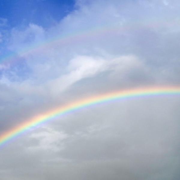 雨上がりには虹が見えるよ−軽度自閉症っ子くんとの歩み−