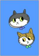 息子と猫との日常