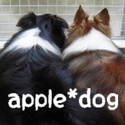 -- apple*dog --