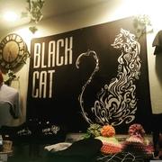 名古屋大須BLACK CAT 世界へ向けてにゃー!!
