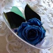 青薔薇さんのプロフィール