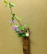 茶道教室 紫庵の徒然日記