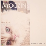 Moppy Kitty