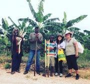 30代OLジャマイカへ☆IRIE LIFE IN JAMAICA