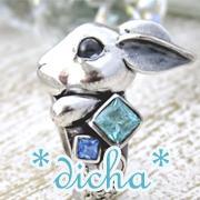 silver accessory*dicha*