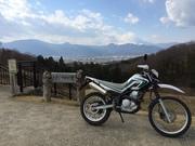 林道100本松・竹・梅