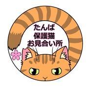たんば保護猫お見合い所