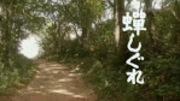 続・蝉しぐれ〜特許翻訳者の徒然日記