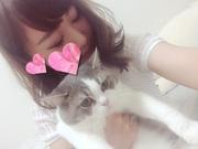 訳あり女でも猫だけは幸せにする!