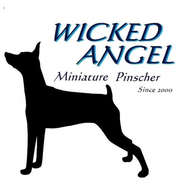 wicked-angelさんのプロフィール
