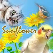 sunflower35さんのプロフィール
