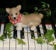 さいたま市岩槻区☆気ままなピアノ弾きの365日