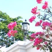 中央線に乗って〜花実の美活日記〜
