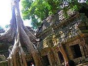 カンボジア 海外旅行