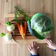 Kitchen Gardenとニワトリ。