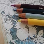 塗り絵日記
