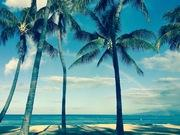 Mikuniのハワイで幸せに暮らす方法