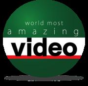話題の衝撃映像 world most amazing video