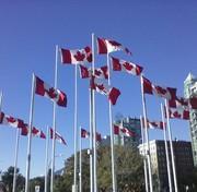 カナダ情報