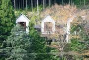 大きな森の小さなギャラリー