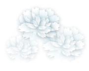 山田風波のつぶやきブログ
