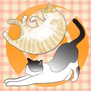 部屋飼いの日本猫ブログ