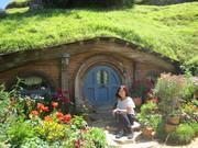 海外に行ってみた。27歳で留学。NZワーホリへ