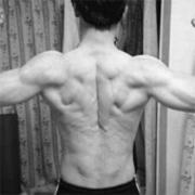 筋トレ:中年の身体能力はどこまで進化できるのか!