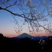 篠窪の四季写真