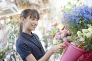 お庭や植物の専門店ニワナショナルブログ